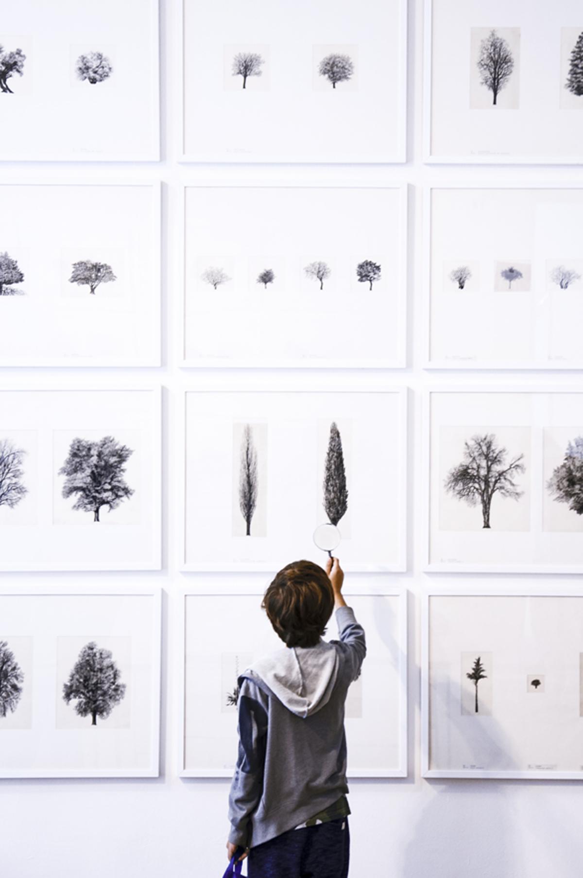 """""""L'architettura degli alberi"""" di Leonardi"""