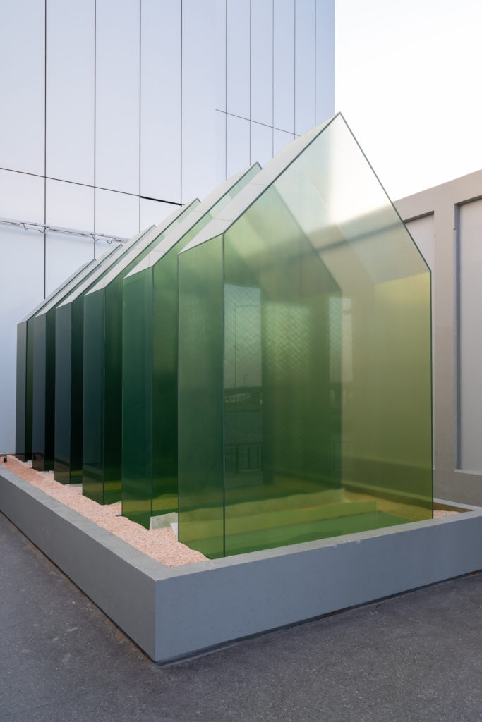 Green house, by Shaikha Al Mazrou