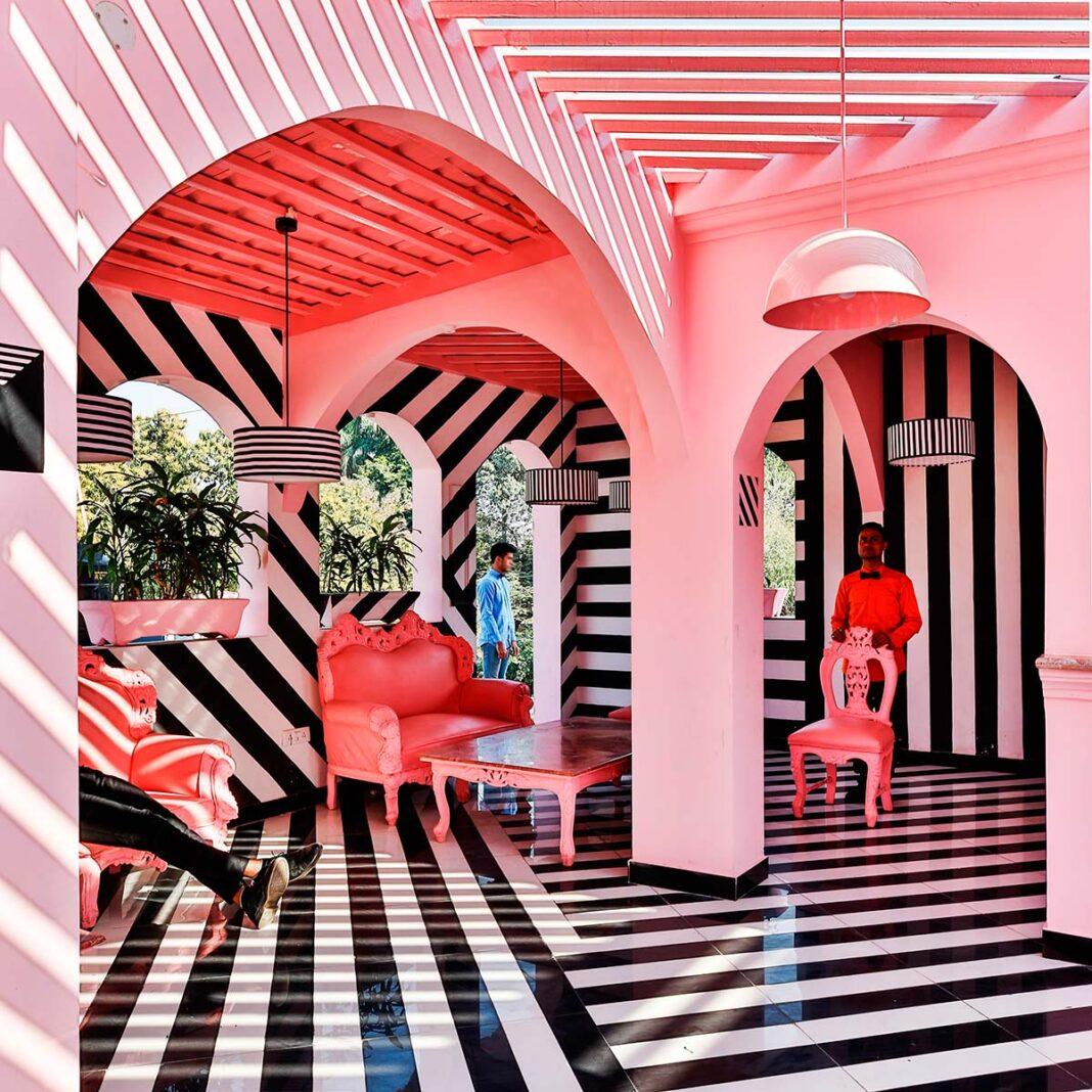 The Pink Zebra, India